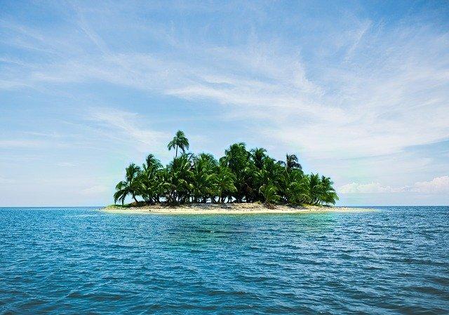 「よみがえれ!バナナ島」ネタバレ感想のまとめ